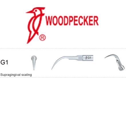 Woodpecker Scaling Tips